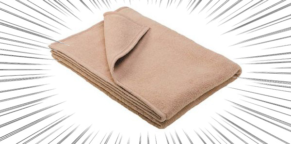 毛布×保温×マミー
