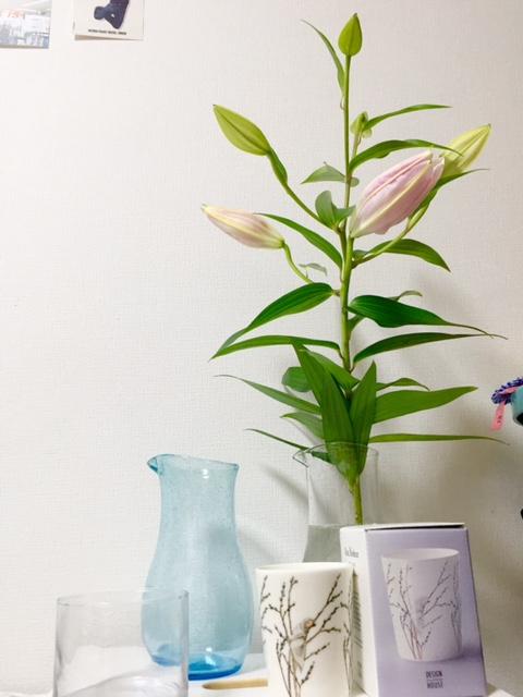 お花に凝る予感