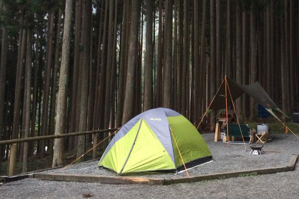 秋だ、紅葉だ、キャンプだ~!